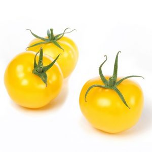 Tomato DNA markers
