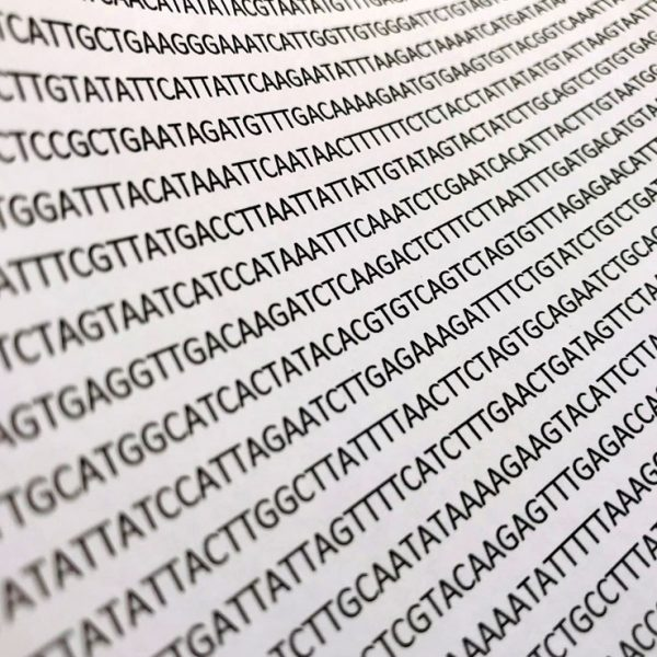 Gene-G Applied Genetics DNA Sequence table